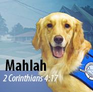 mahlah_3
